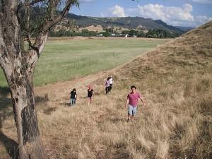 EMF refuge in Kings Valley, Victoria, Australia (Photo by Kim Goldberg)