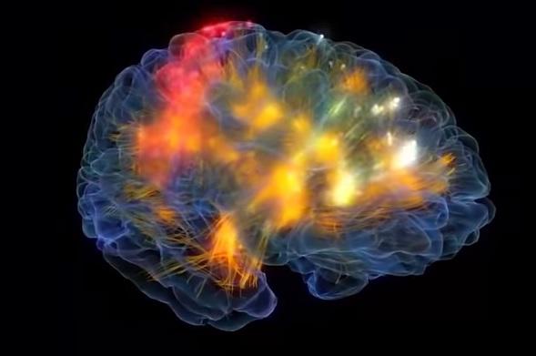 Image of Brain cell firing