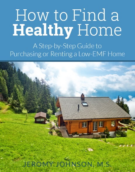 Healthy Home Cover 1
