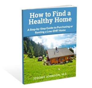How to Find a Healthy Home 3D Image