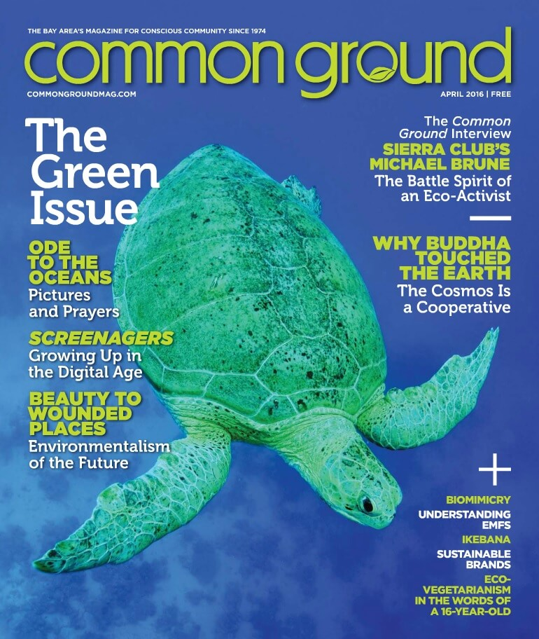 Common Ground Magazine April 2016 How to Create a Healthy Home