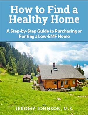 How to Find a Healthy Home